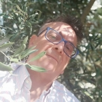 Foto del profilo di miccoro