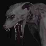 Foto del profilo di Ellie