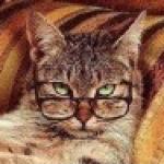 Foto del profilo di ingdalla