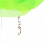 Foto del profilo di elisola