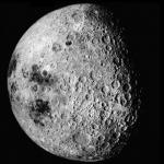 Foto del profilo di moonclap