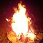 Foto del profilo di stefano