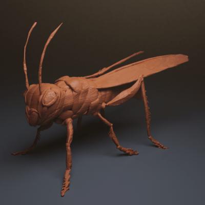 locusta-render