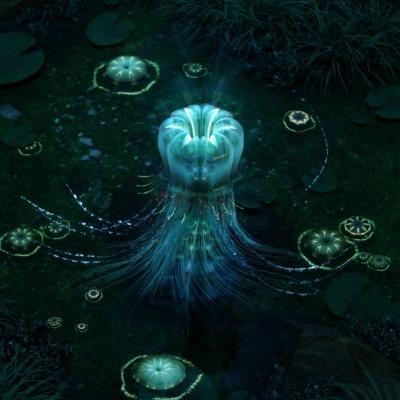 secret-jellyfish