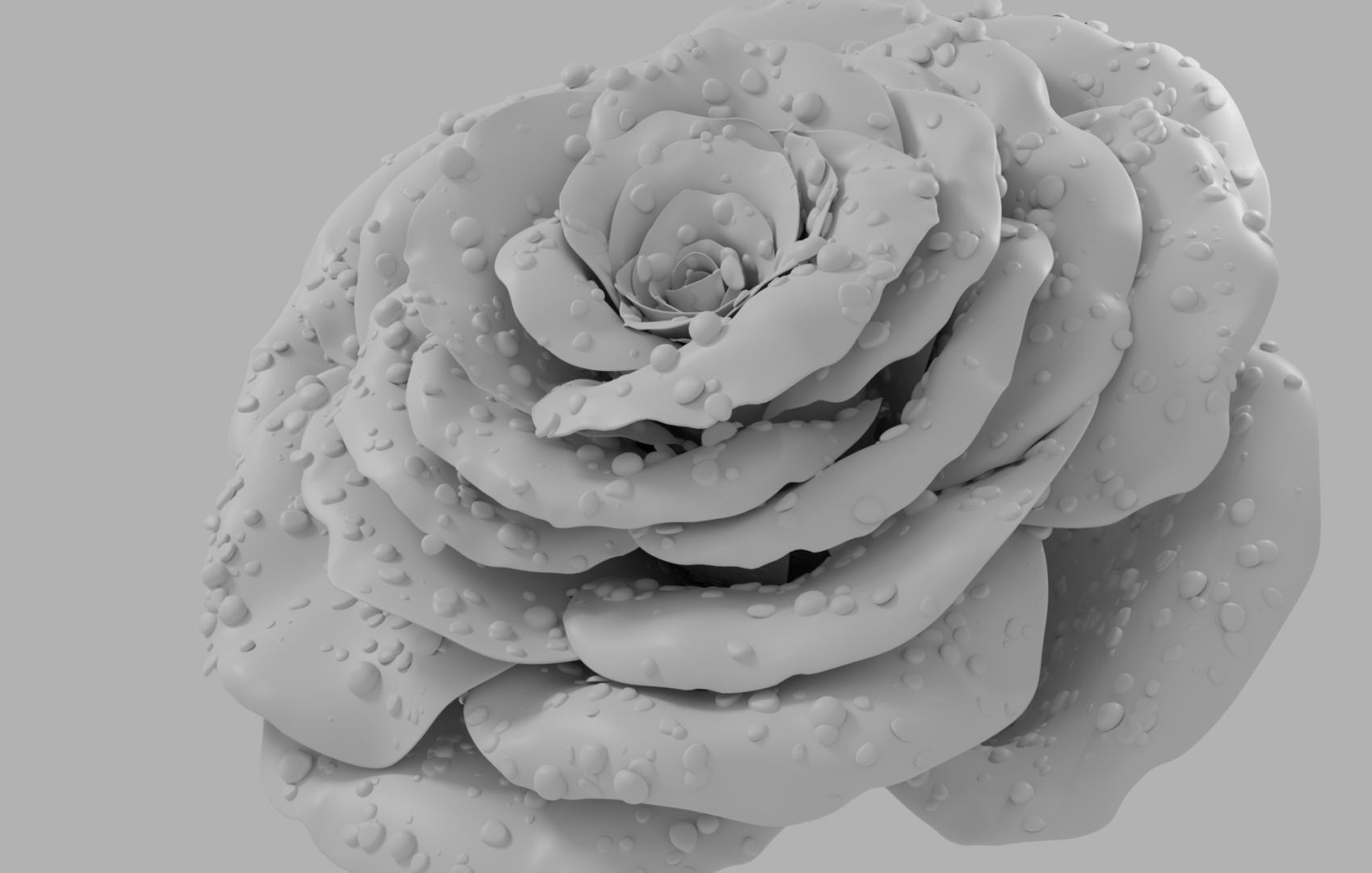 rose_clay