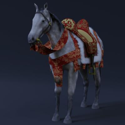 cavallo-7