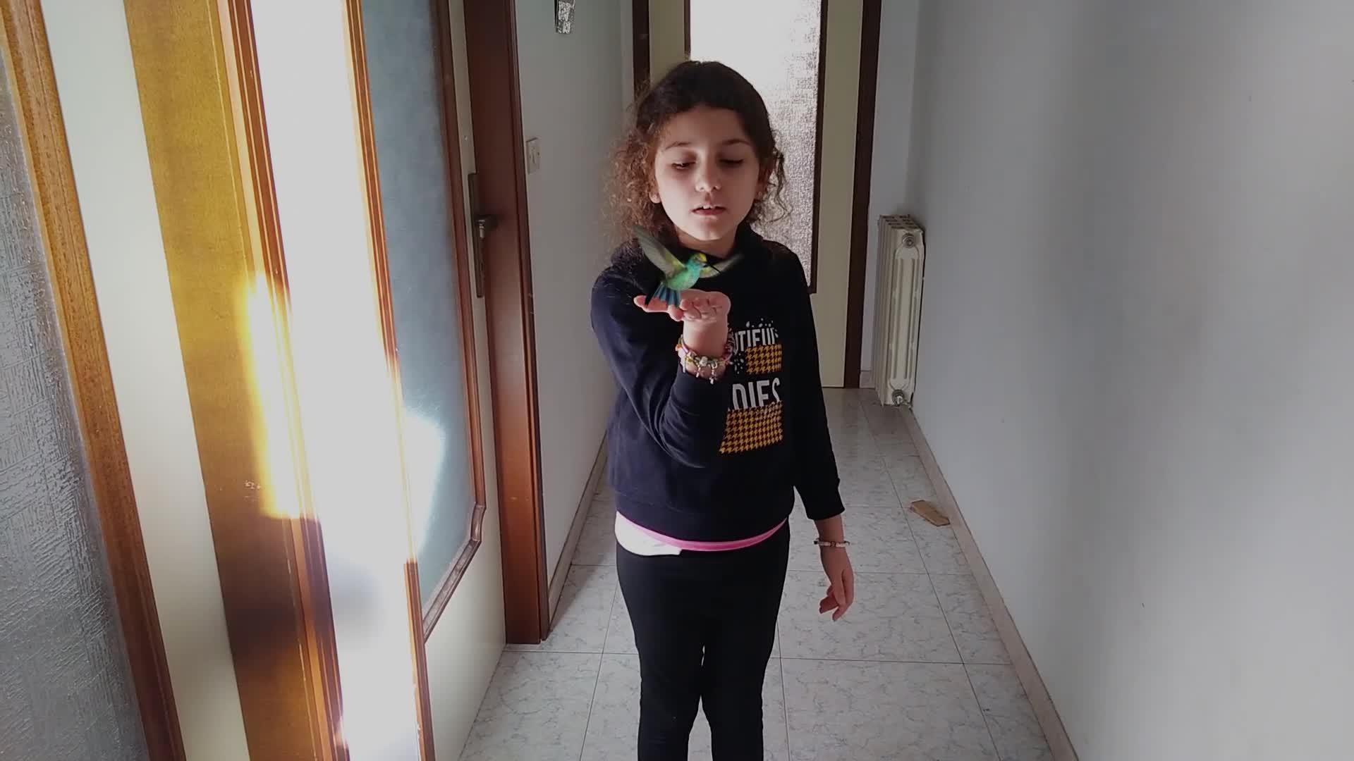siria-colibri_0000001-0185