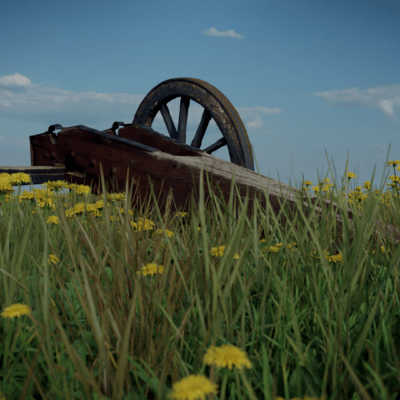 cannon_in_the_grass