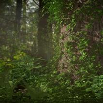 plants_scene