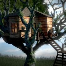 casa-sullalbero2