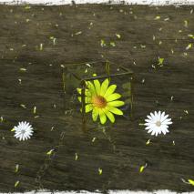 fantasy-cube-ciondolo-di-primavera