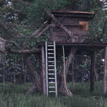 contest-casa-albero-blender