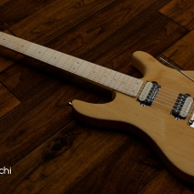 chitarra-eko-dtone