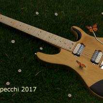 dt-tone-eko-guitar