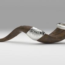 shofar-blender