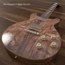 guitar-2-davide-specchi