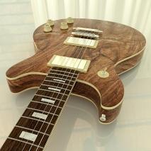 chitarra-elettrica-ds-4
