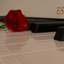 pianoforte-e-rosa-30001