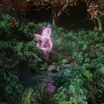 spirito-della-foresta-2