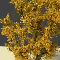 albero_con_foglie_skin