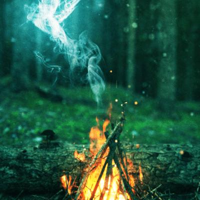 foresta-def
