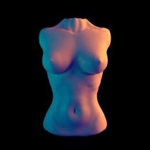 female-torso