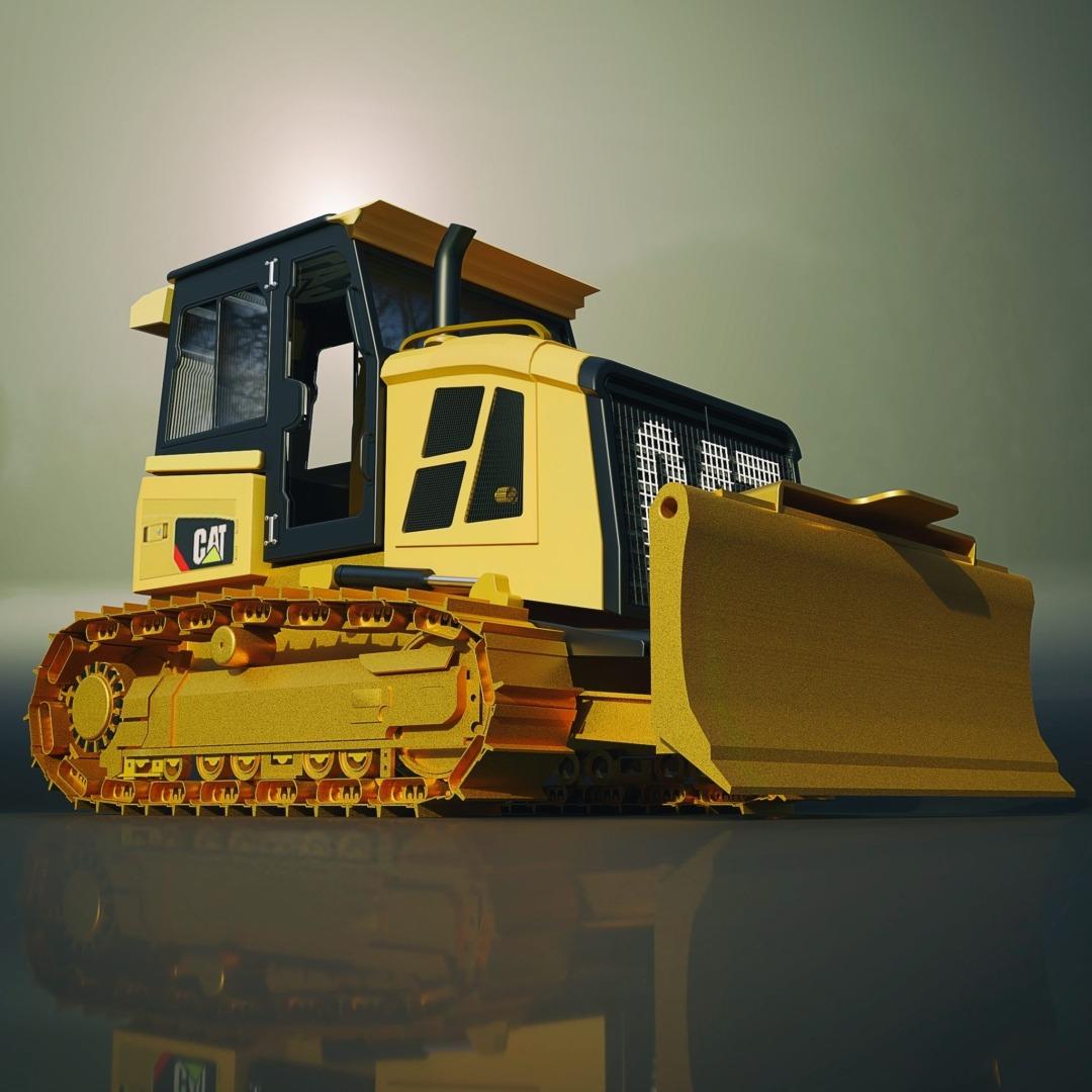 cat-d5-1