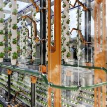 fgh_the-autonomous-greenhouse_enricogrotto