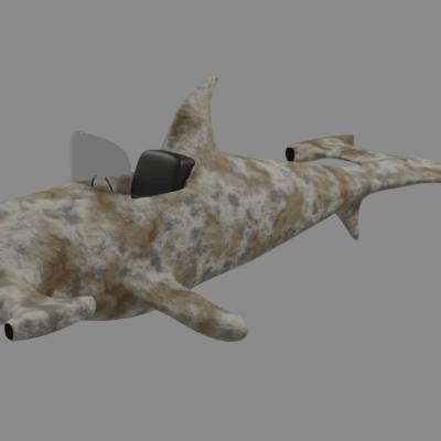 squalicottero-4-7