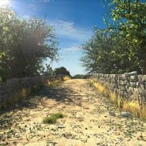 sicilian_country