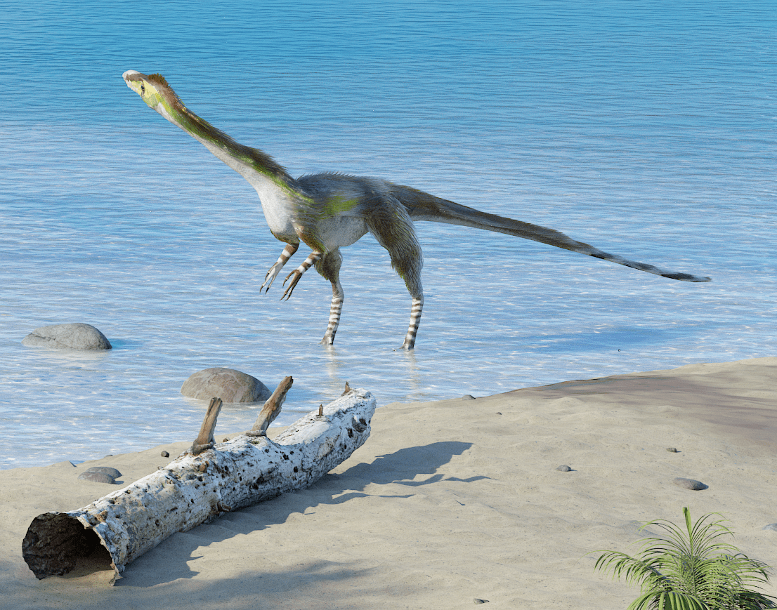 life-of-the-past-late-cretaceous-apulia-theropod-detail