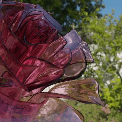 rosacremesi